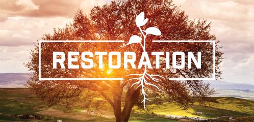 restoration_header.png